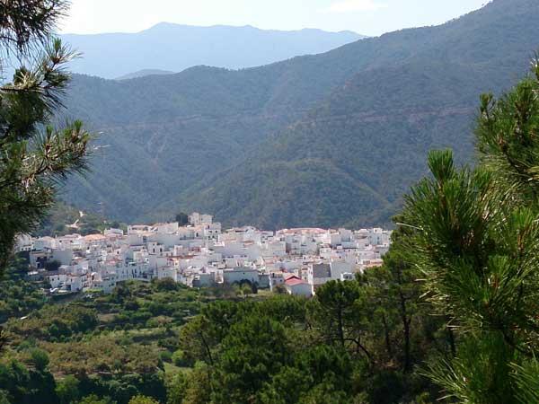 Team4you Galería de fotos Caminatas Guiadas 06 Turismo Activo y Aventura Marbella Málaga Andalucía