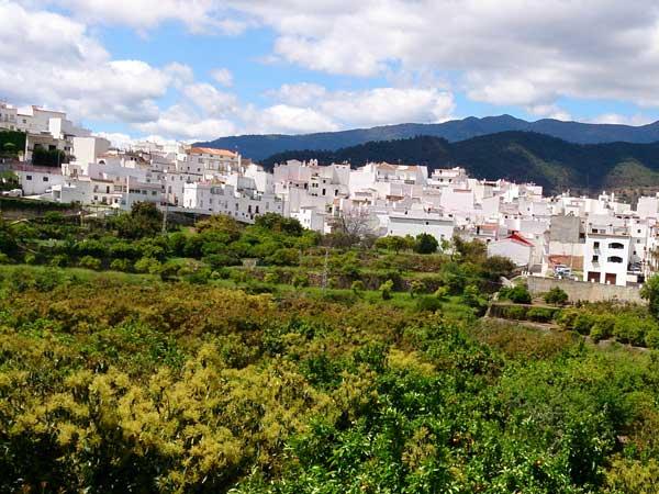 Team4you Galería de fotos JEEP SAFARI 4X4 06 Turismo Activo y Aventura Marbella Málaga Andalucía