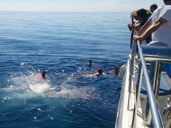 Team4you Galería de fotos Eventos corporativos Disfrutar de un baño en las aguas cristalinas de la Costa del Sol.
