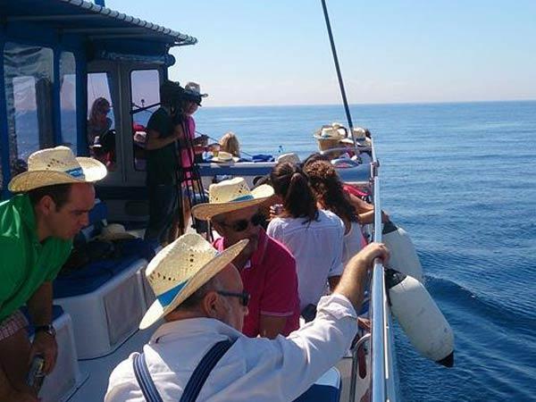 Team4you Galería de fotos Eventos corporativos. Excursiones de vela a bordo de un catamarán, una maravillosa manera de disfrutar de la Costa del Sol.