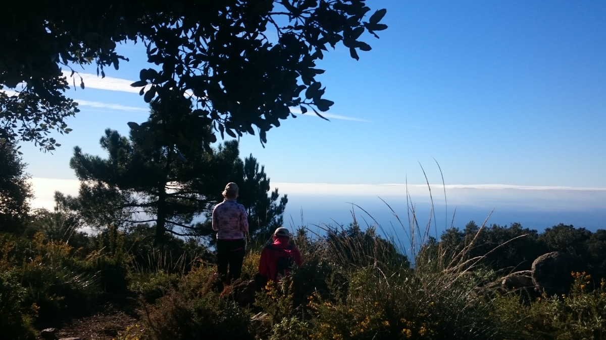 GUIDED HIKING TOUR Marbella Walking tour through the great outdoors. 01 | Team4you