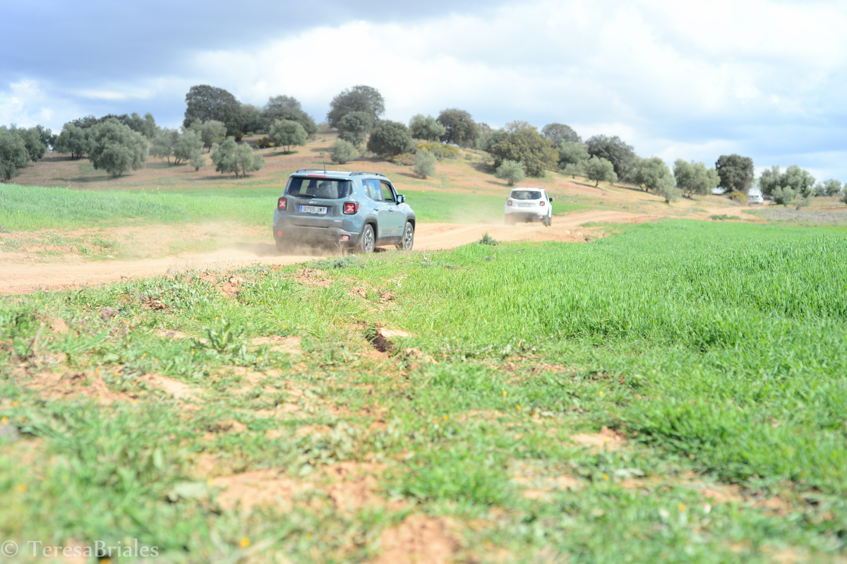 JEEP RALLY 4X4 GPS Marbella Teams complete the route through winding mountain trails and back road 06 | Team4you