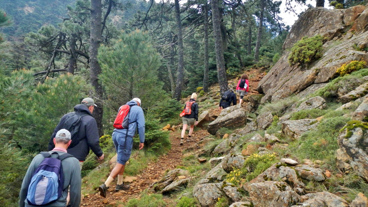 Trekking trip Marbella Los Reales trip to the Sierra Bermeja natural park 01 | Team4you