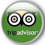 Team4you. Reviews on TripAdvisor.