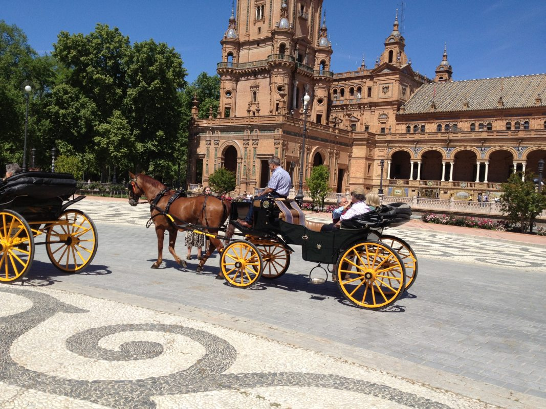 Sevilla Marbella Guided City Tour 03 | Team4you