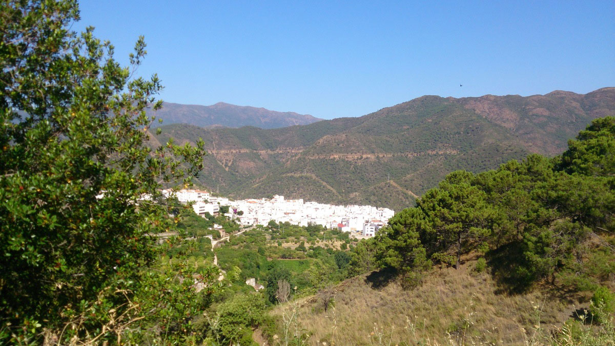 GUIDED HIKING TOUR Marbella half-day walking tour through Nature and Amazing Sights 01 | Team4you