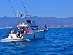 Sea fishing Marbella Outdoor Activities